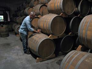 martinique_rhum_distillerie-la-mauny_maitre-de-chais